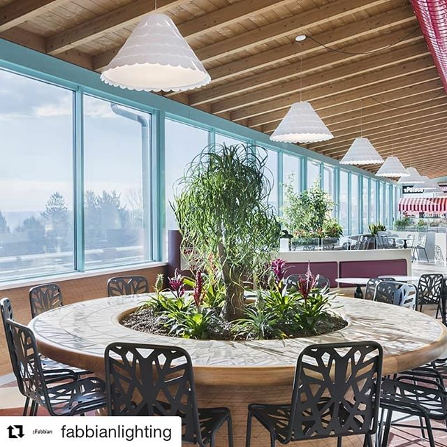 @fabbianlighting ・・・ New light for the Food Court of Varese (Italy), discover the last project with our Roofer. Design: @_architects